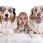 新生児とワンちゃんの心温まる写真