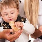 動・植物と触れ合うことで育つ、子供の共感性