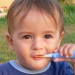 【永久歯が生える前に】家庭での歯磨きと虫歯予防について